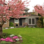 bigstock-beautiful-home-with-blossoming-15282941
